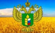 Сотрудничество библиотекарей Игринского района с тружениками села