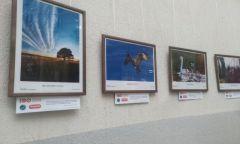 Проект «Зеленая сеть» от Министерства природы Удмуртии в Глазове