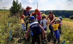 Туристический поход для ребят из летнего лагеря при Котегуртской библиотеке