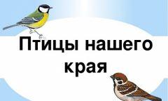 Экологический час «Птицы нашего края» вНижне-Юрашской библиотеке