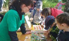 Библиотека «Зеленый мир» наблаготворительном фестивале