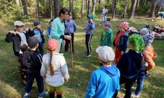 Урок-поход «Лес полон чудес» для чеканских школьников