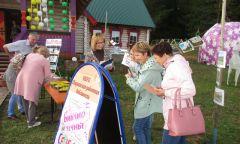 Библиотечные площадки на празднике села
