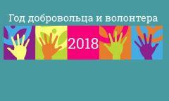 Торжественное открытие Года добровольца в Игринском районе