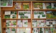 Выставка «Дизайн сада» в районной библиотеке